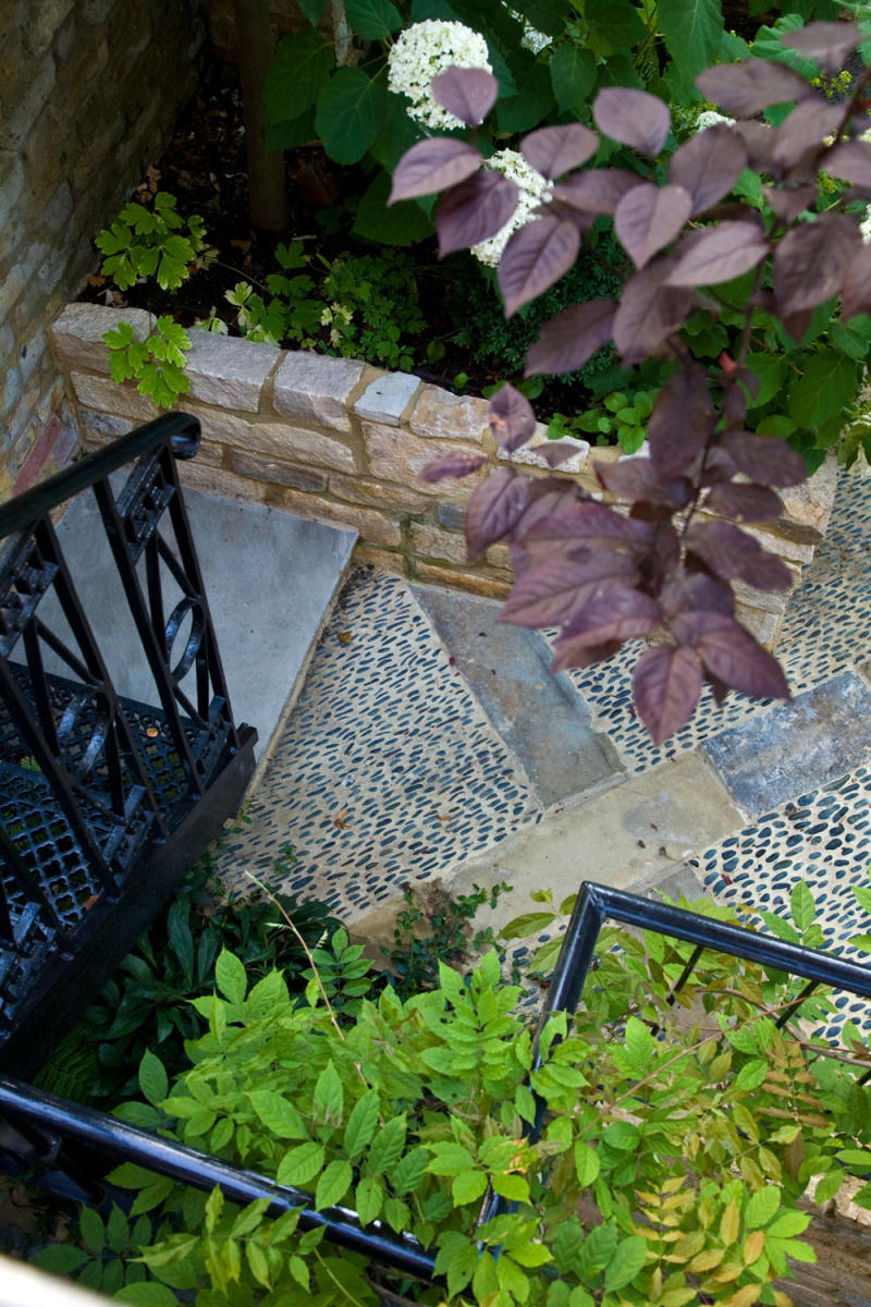 Image Result For Gb Trees Garden Services
