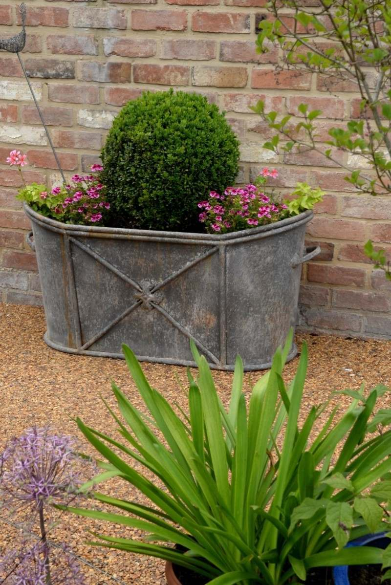 Ring pull trough with Buxus ball in terraced Cotswold garden