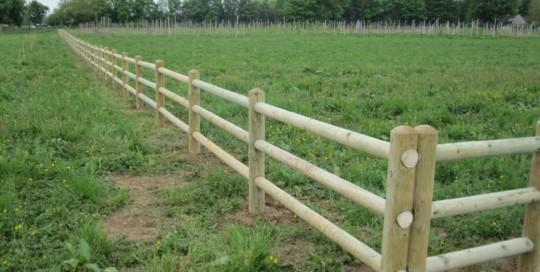 The Orchard Fence 4