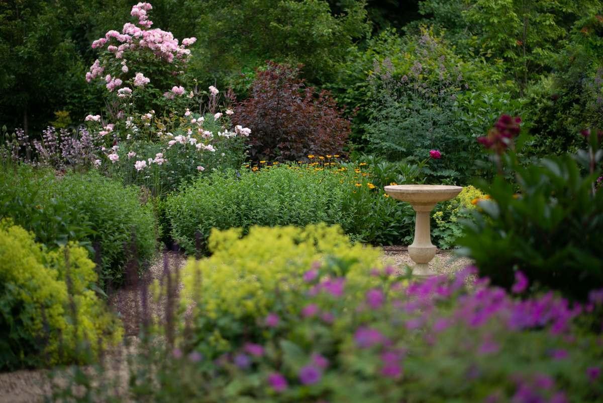 Garden Design Team - Nicholsons Plants, Forestry ...