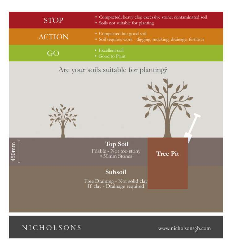 Guide to planting in soils infographic - Gardening Advice