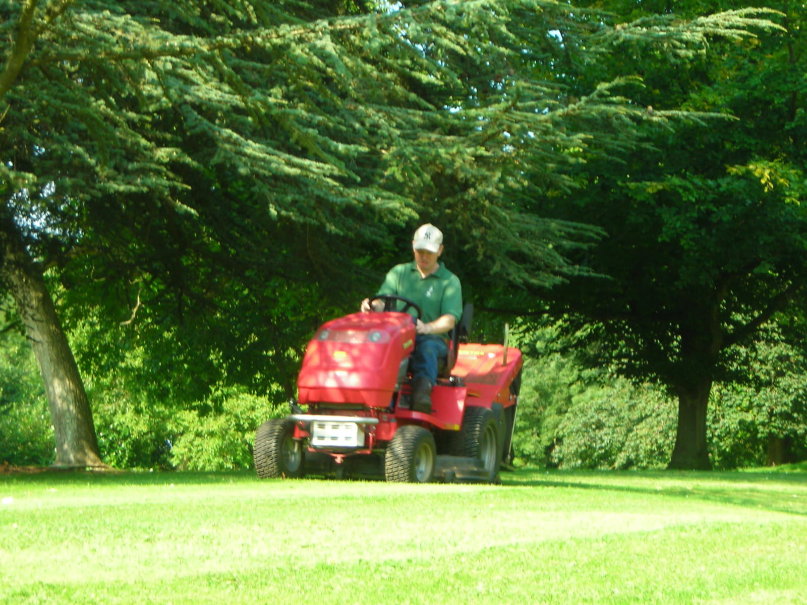 lawn_care_ride_on_mower_grass_mowing