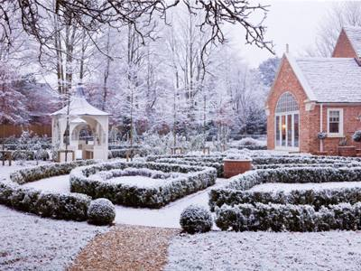 A pattern of box hedging dusted with snow