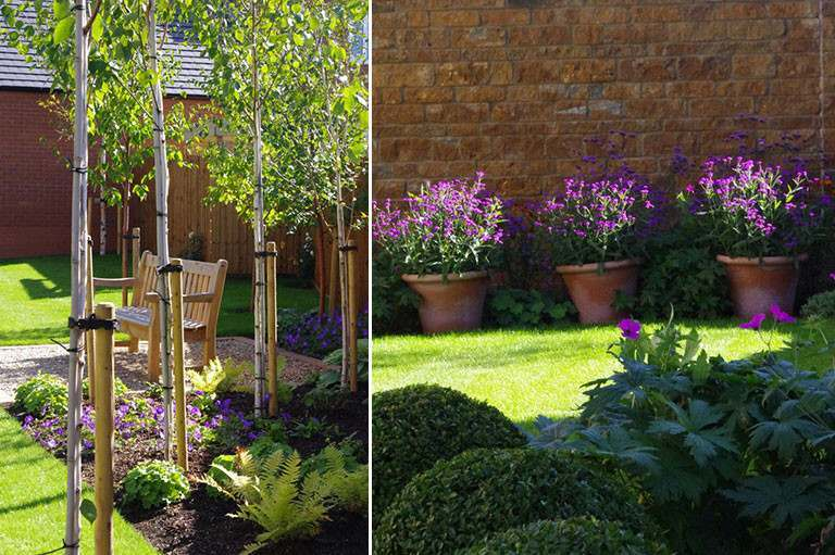 Beautiful planting design by Nicholsons at Adderbury for David Wilson Homes
