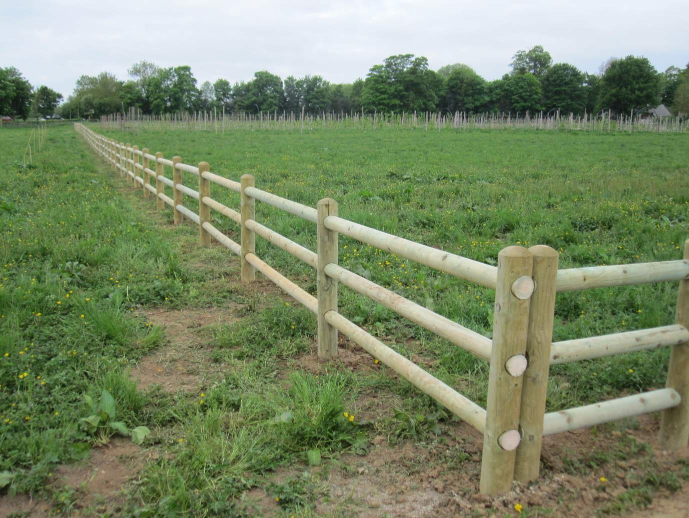 The Orchard Fence