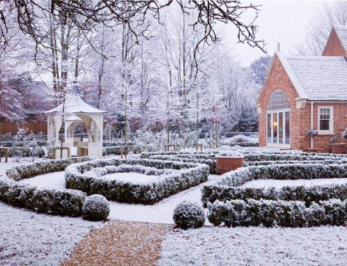 No Bones About it: Winter Garden Design