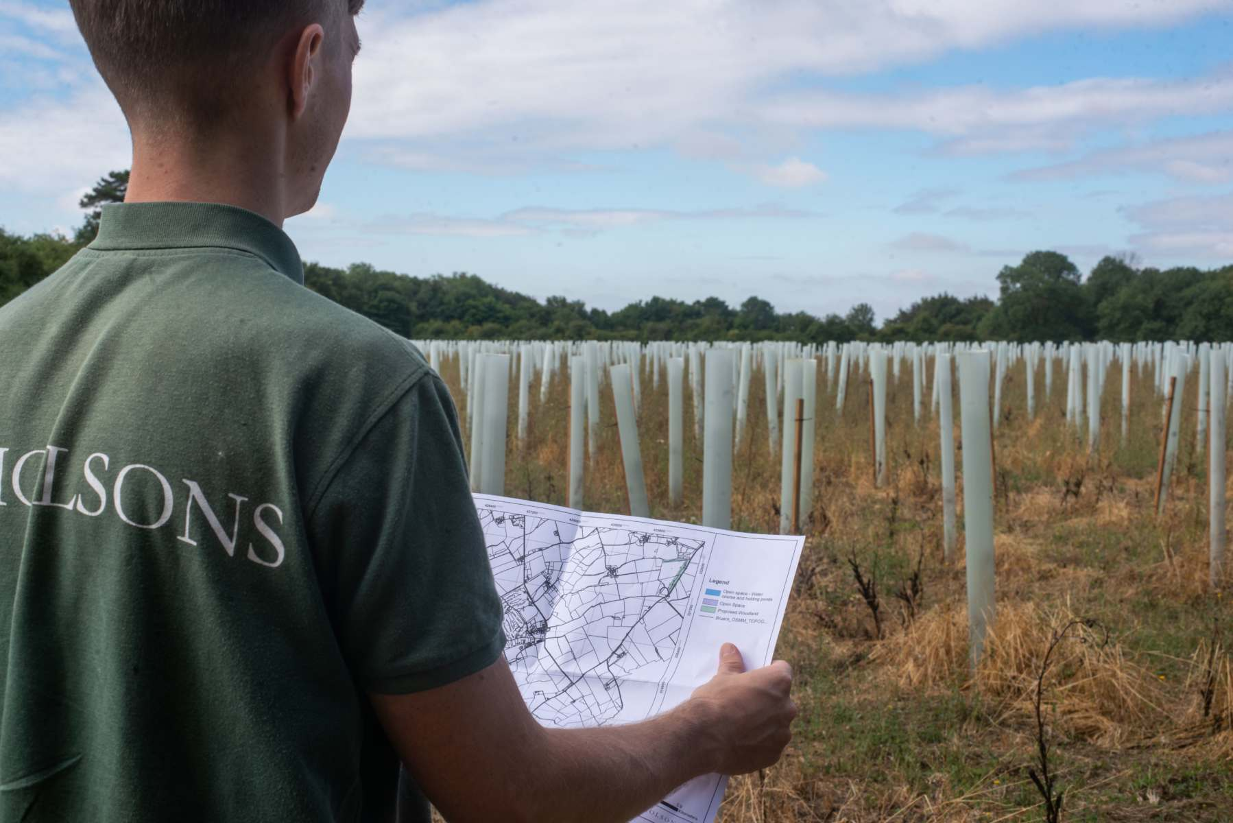 Forestry and Arboriculture