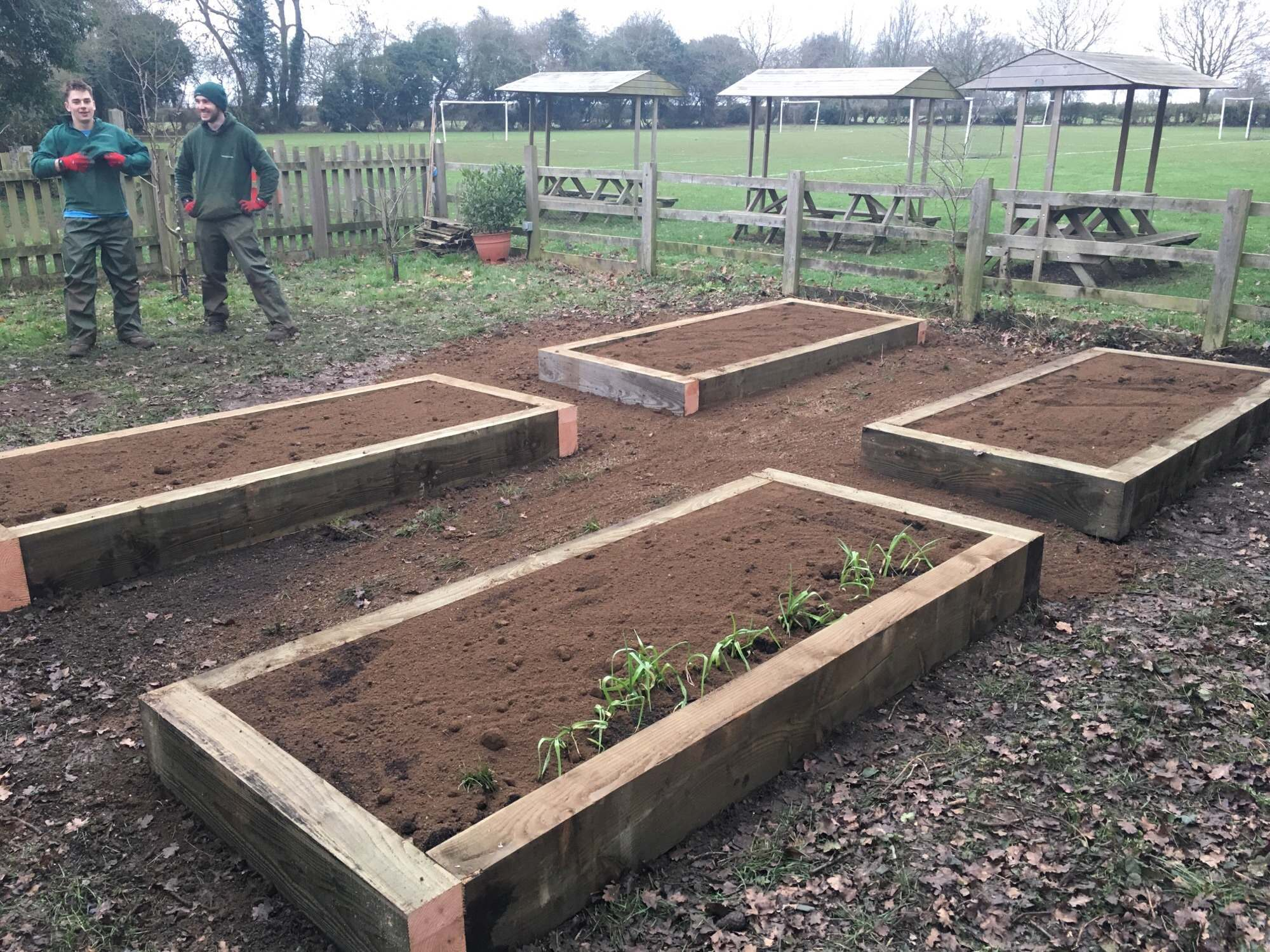 Deddington Primary School Vegetable Garden