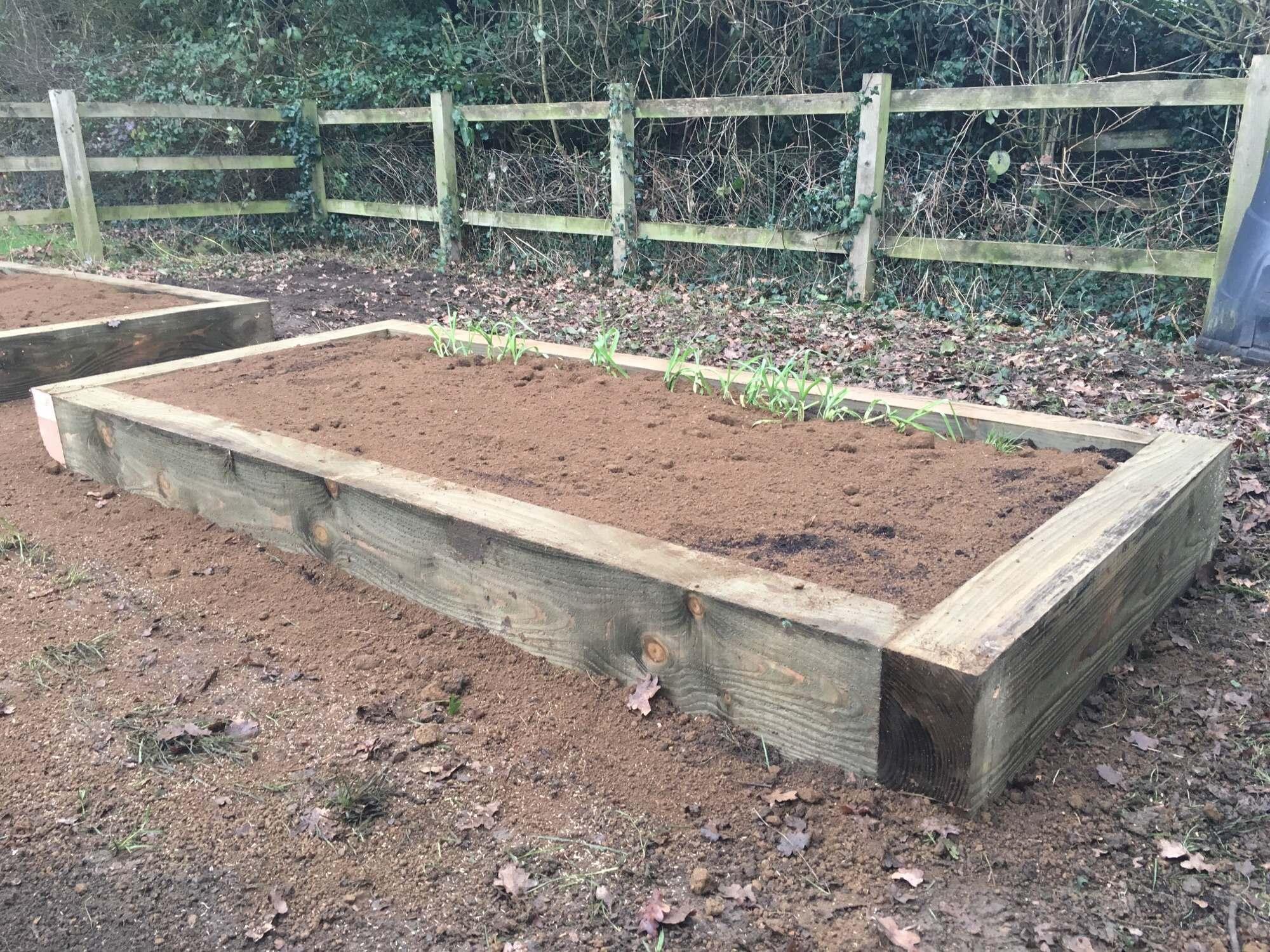 Deddington Primary School Vegetable Garden