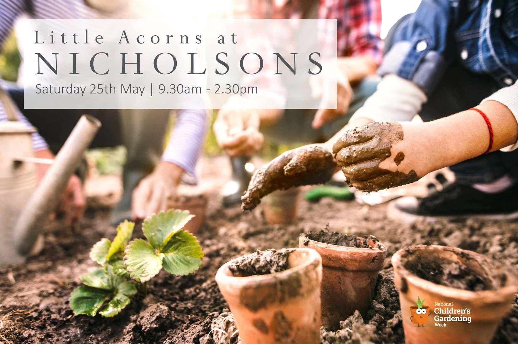 Little Acorns at Nicholsons