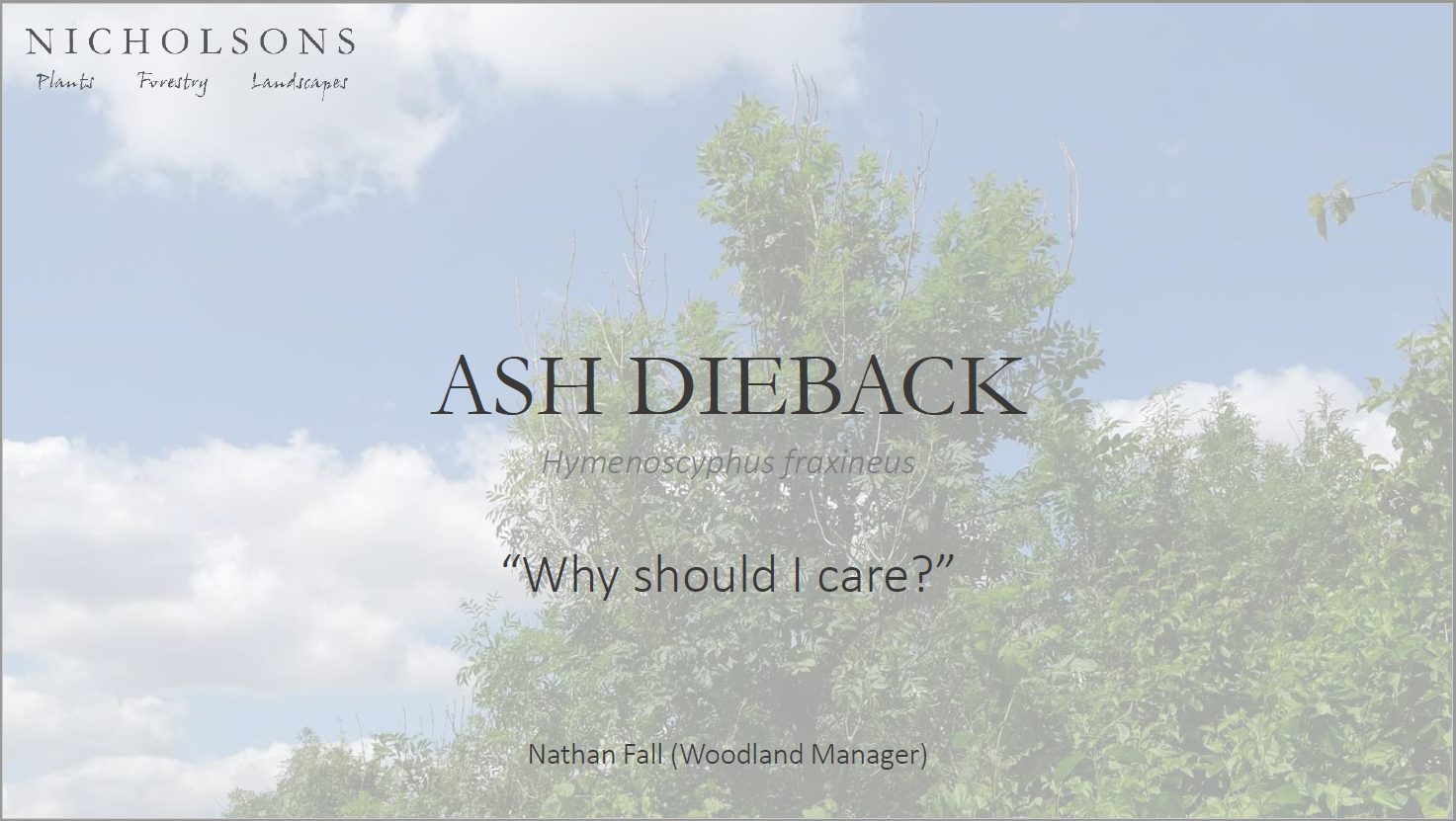 Ash Dieback: Why Should I Care?