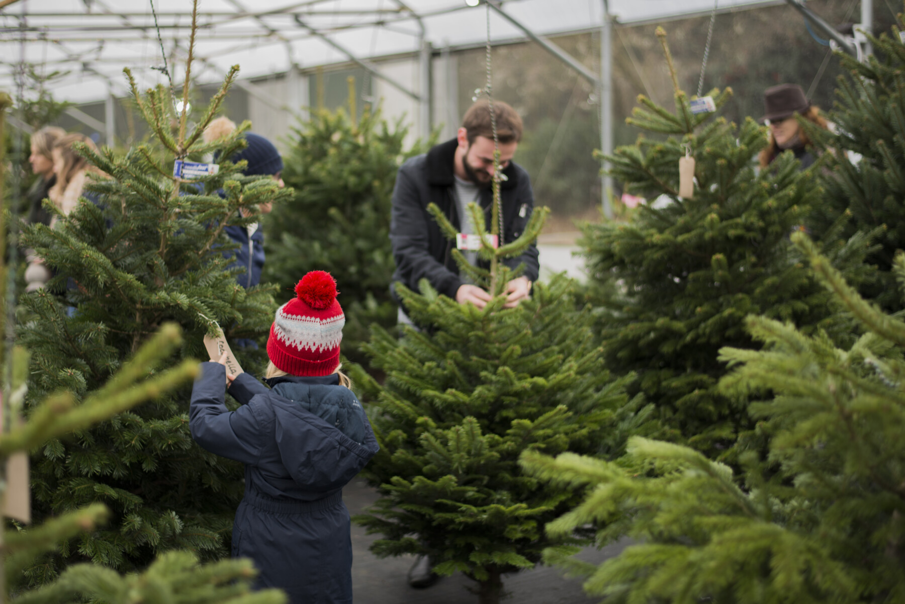Christmas at Nicholsons