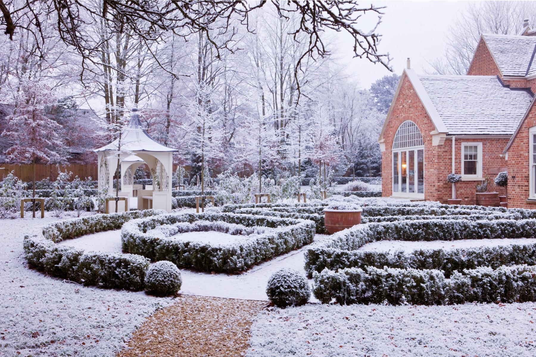Gardening Life in Winter