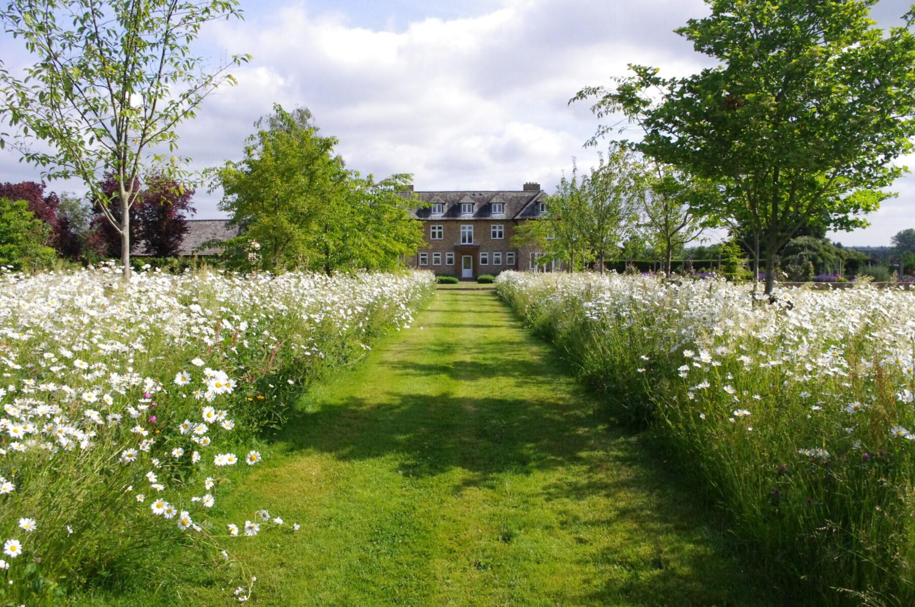 The Secret Garden - Nicholsons Plants, Forestry & Landscapes