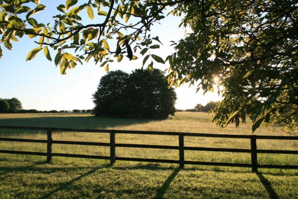 The Tranquil Farmhouse