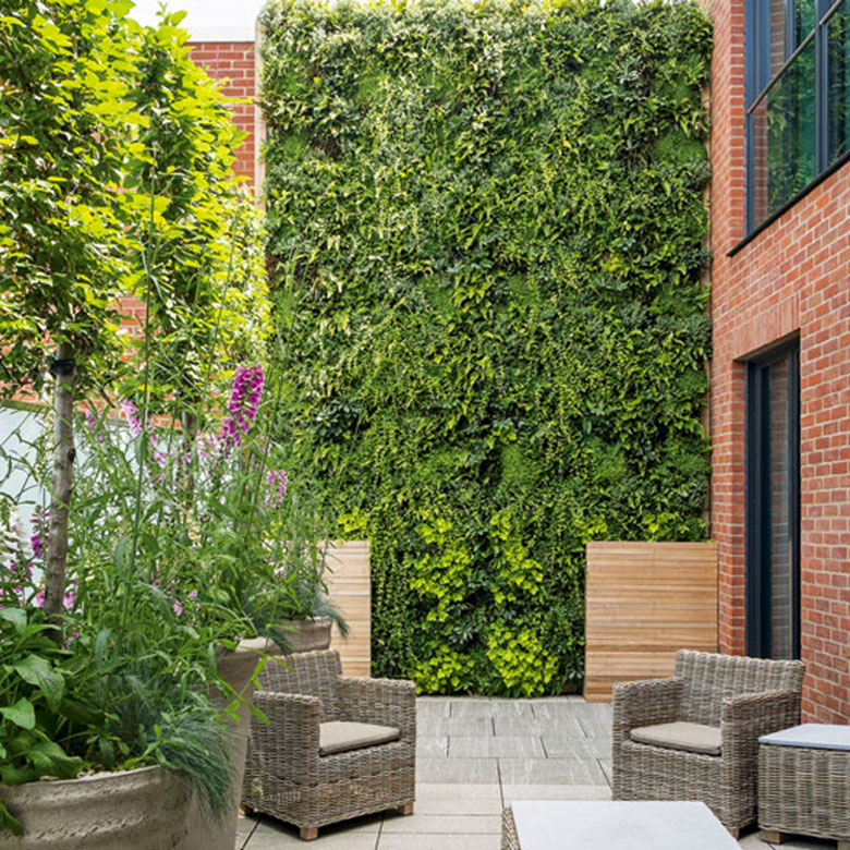 Living Walls: Vertical Sustainability