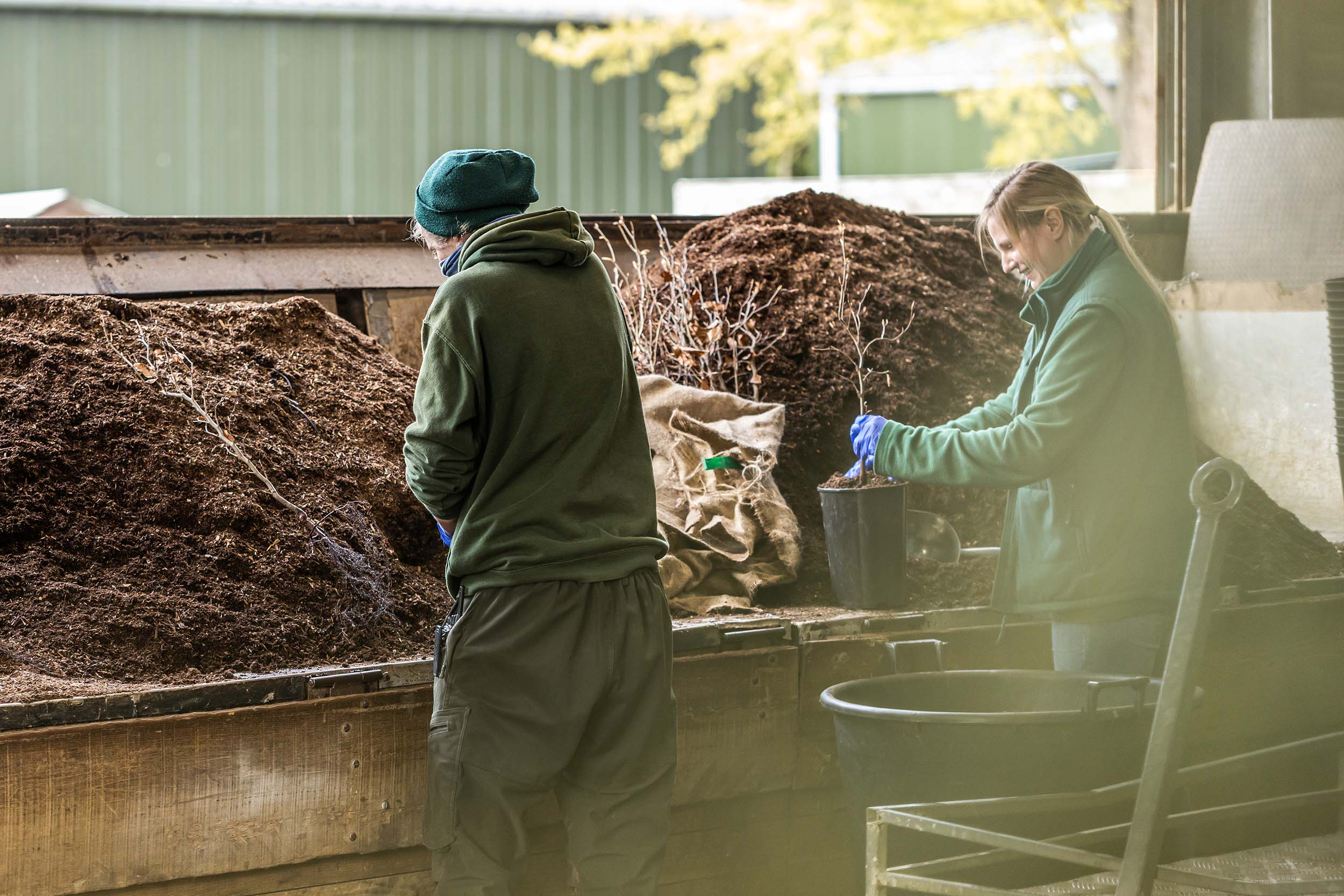 Peat Free on The Production Nursery at Nicholsons