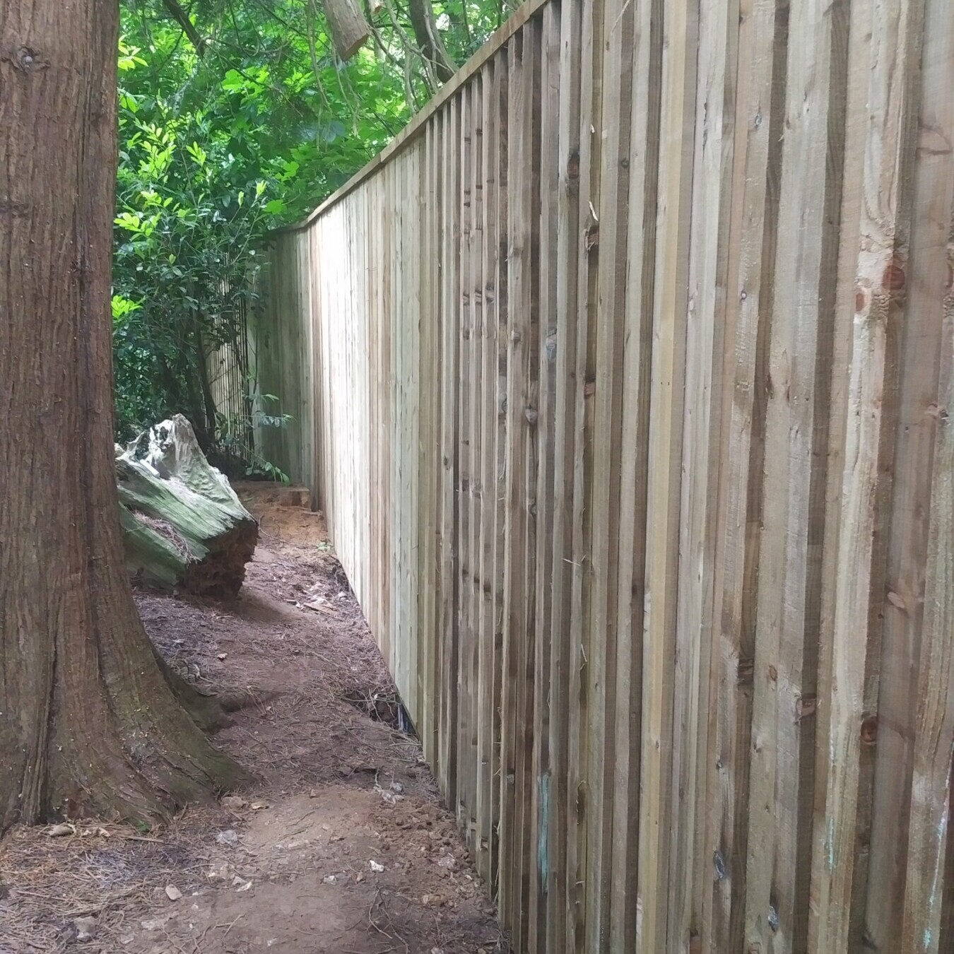 Choosing the Right Fencing