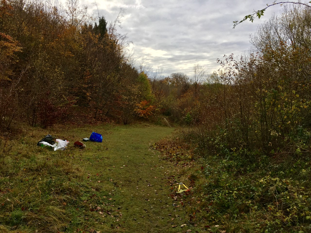 Habitat Management: Creating and Managing Woodland Glades and Rides