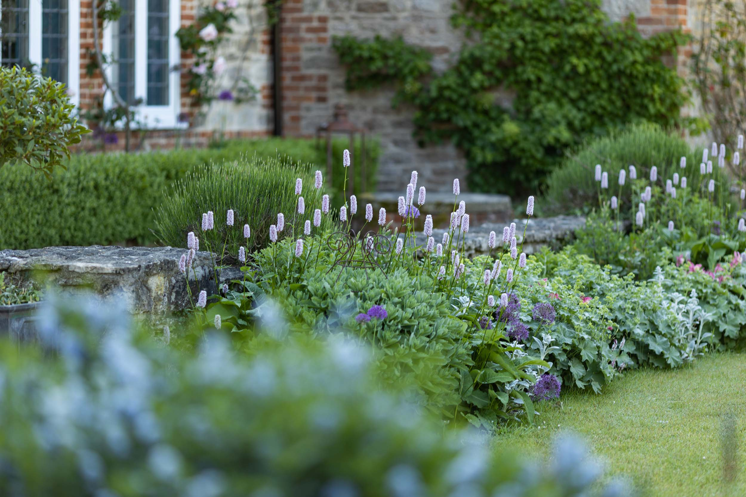The Secluded Garden