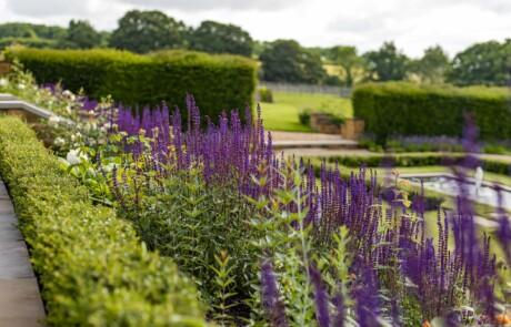 Nicholsons Garden - Lockdown For The Grandchildren 3