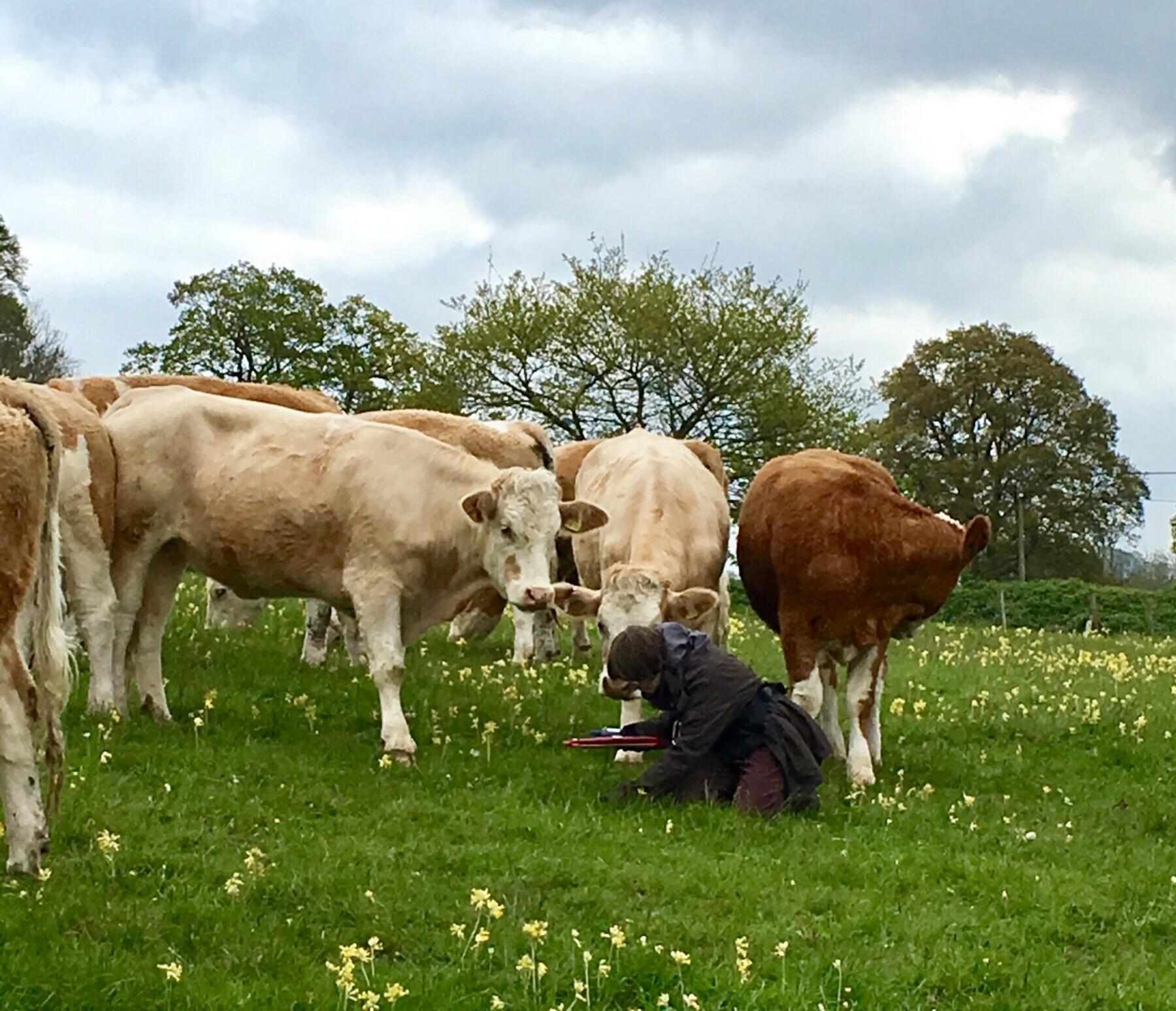 Caring for Grasslands